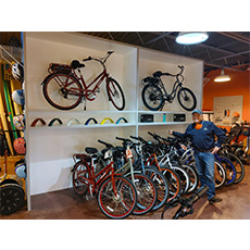 Fortus Electric and Pedego Electric Bikes